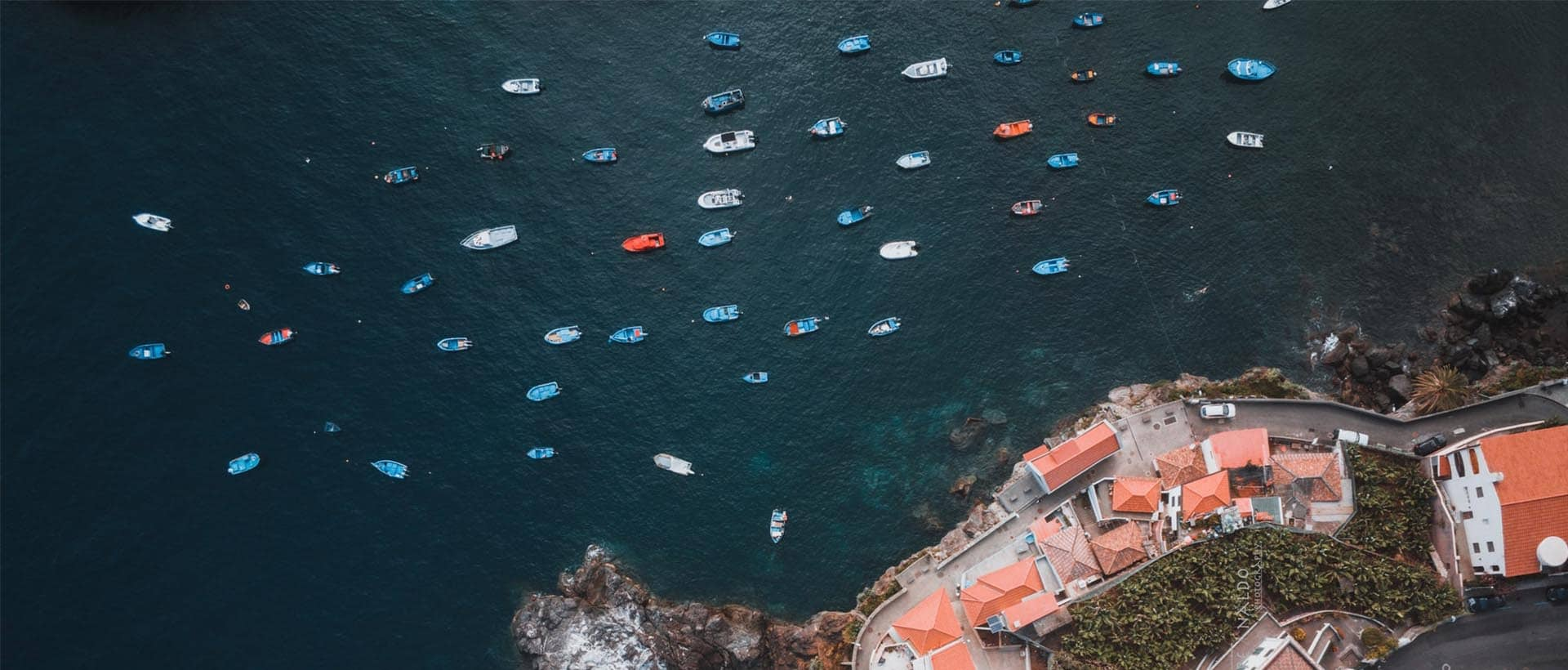 Your Guide to Madeira
