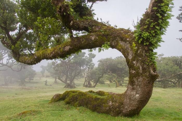 Take a hike! Portugal Home - Portugal propety experts