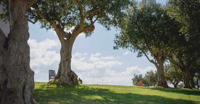 Parque da Paz, in Almada Portugal Home - Portugal propety experts