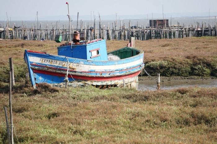 Explore Sado Estuary Nature Reserve Portugal Home - Portugal propety experts