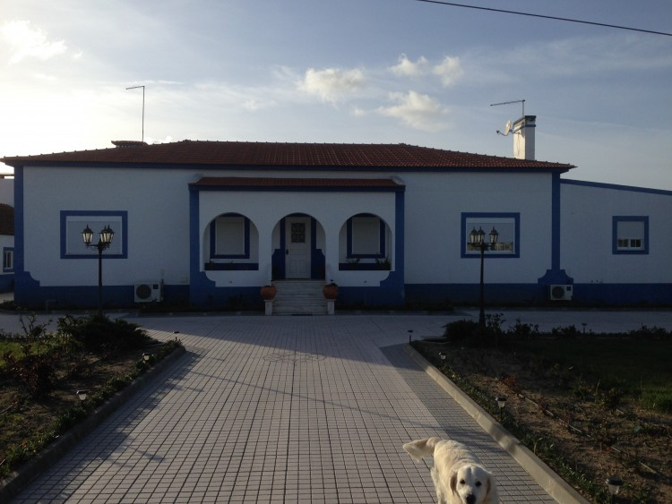 Property for Residential in Gouxaria, Alpiarça, Santarém, Portugal