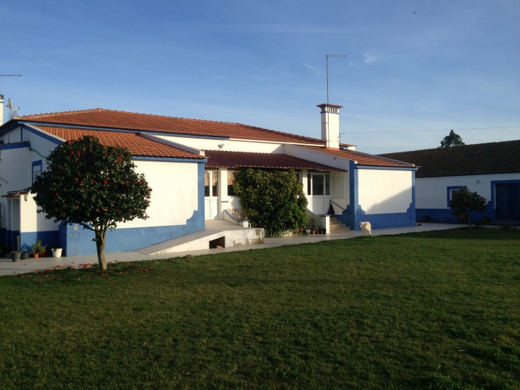 Property for Residential in Gouxaria, Alpiarça, Santarém, Portugal