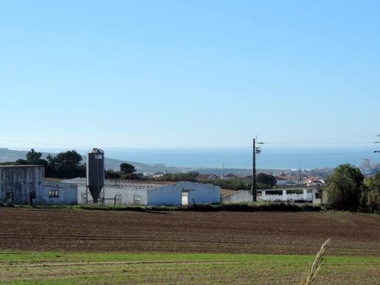 Land Property for sale in Lourinhã, Portugal