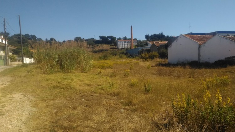 Commercial Property Property for sale in Caldas da Rainha, Portugal
