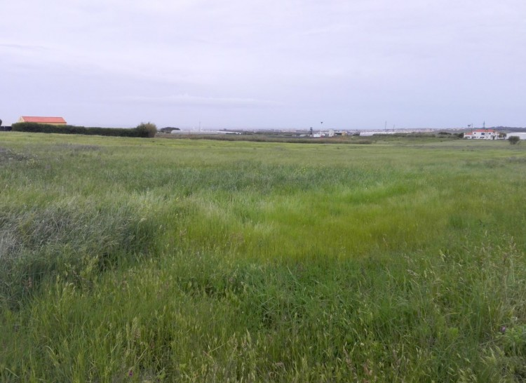 Land Property for sale in Peniche, Portugal